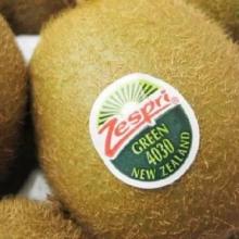 奇异果番外01、柠檬-食品级水果不干胶标签
